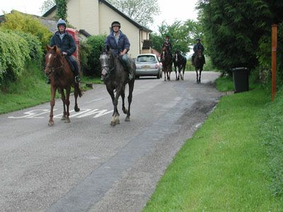 Horse Riders on the Roads: Make Sure You Know What to Do